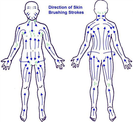 Dry Brushing | Gaelle Organic | Organic Skincare