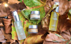 Peels Masks and Scrubs on our Les Petites Collection